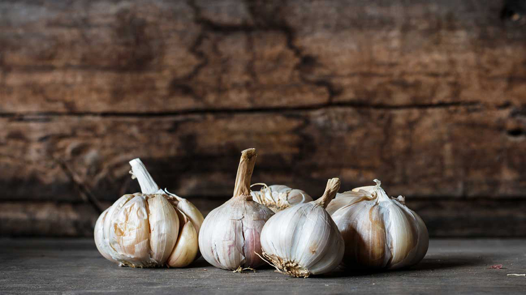 Benefits of Garlic in Ear pain